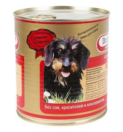 Влажные корма премиум-класса для собак