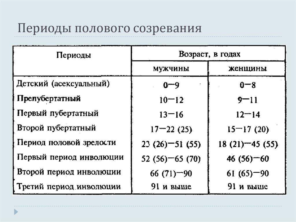 Половая зрелость, половой цикл и беременность у собак и кошек