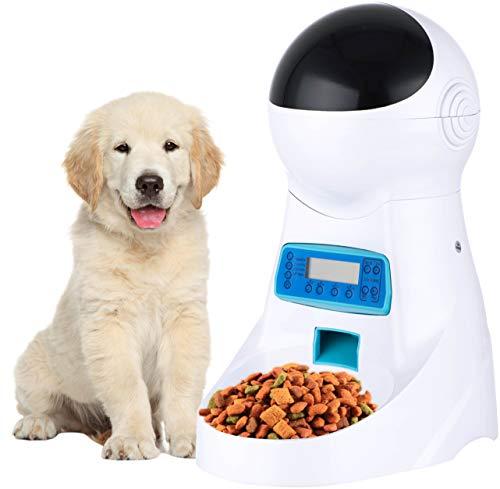 Автоматическая кормушка для собак: с таймером или кнопкой, для мелких и крупных пород