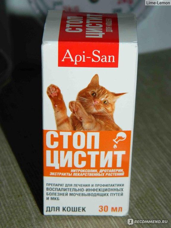 Диета при уратном типе мочекаменной болезни для кошек