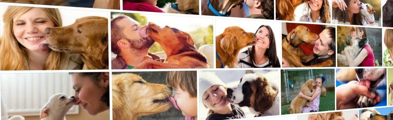 Почему собака вылизывает хозяина за ушами