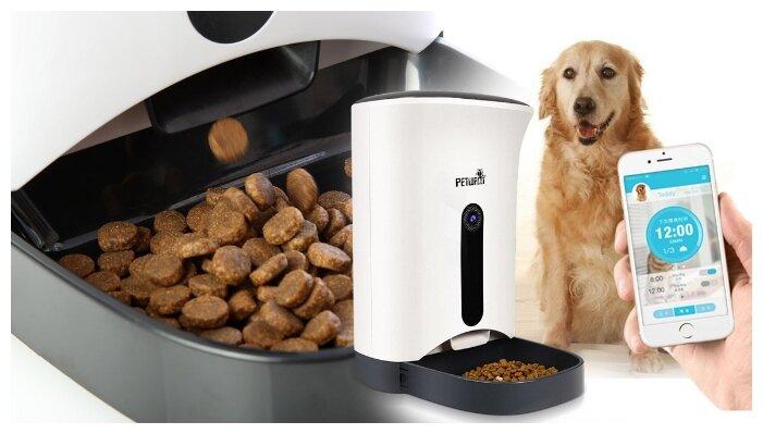 Автоматическая кормушка для собак и как она работает