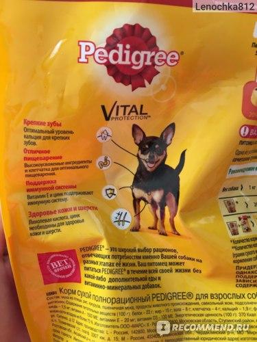 Корм «педигри» для щенков: отзывы ветеринаров