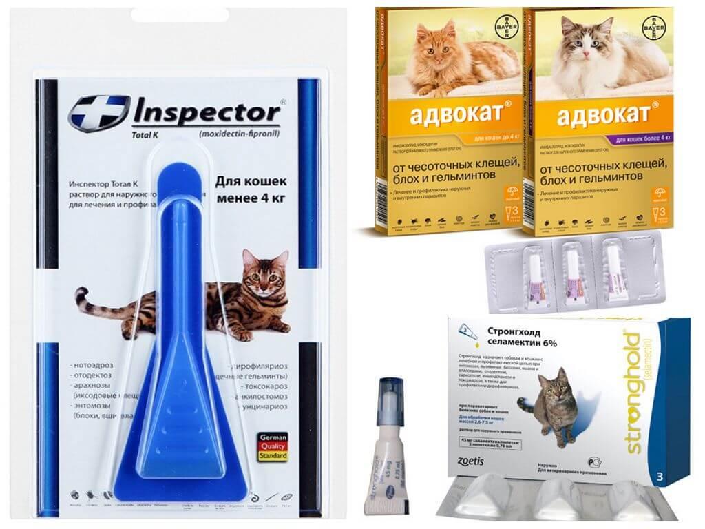 Inspector капли для кошек: инструкция, отзывы и цена