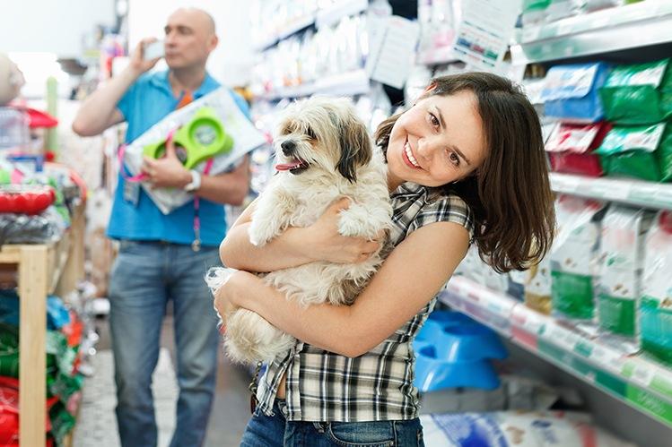 Влажный корм для собак: топ лучших консервов по цене и качеству состава