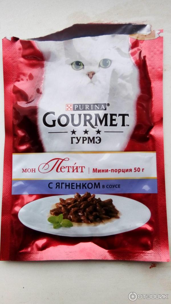 Gourmet корм для кошек: 5 популярных видов, отзывы