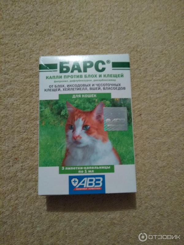 Капли от блох барс для кошек инструкция и советы по применениюкапли от блох барс для кошек инструкция и советы по применению