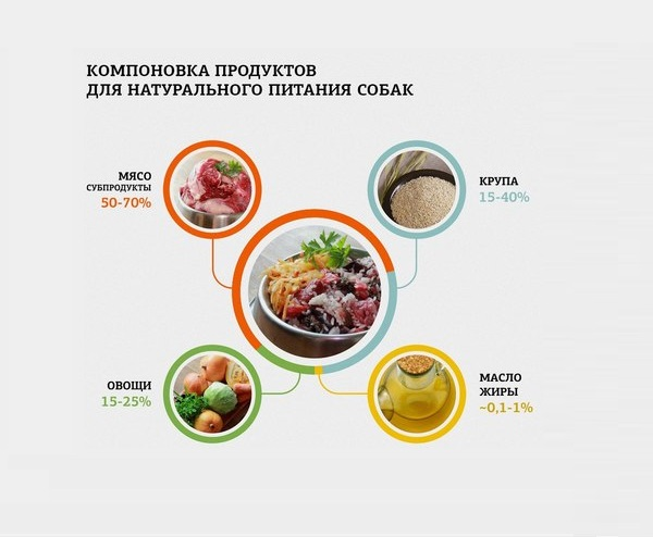 Кормление собаки натуральной пищей: рацион и таблица кормления
