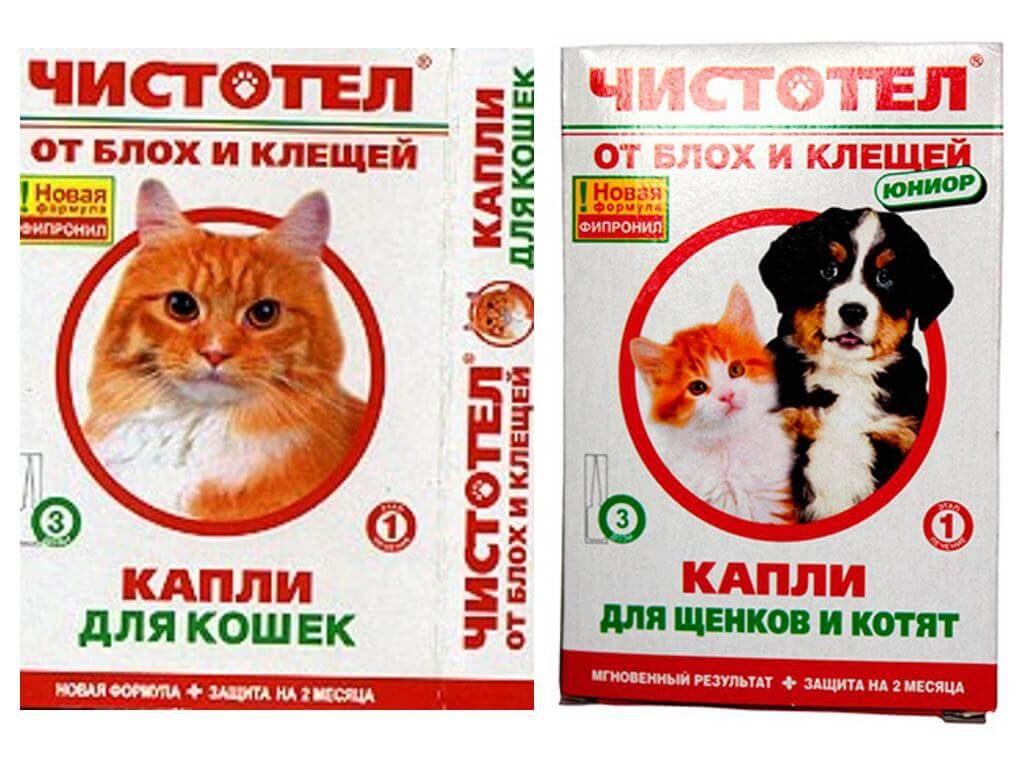 Спрей от блох для обработки кошек: инструкция по использованию и обзор популярных средств. как выбрать хороший и эффективный спрей от блох для кошек
