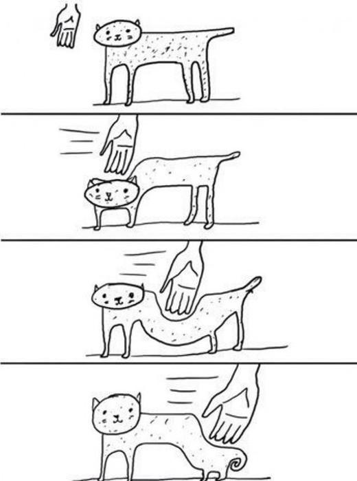 Как ласкать кошку: 15 шагов (с иллюстрациями)