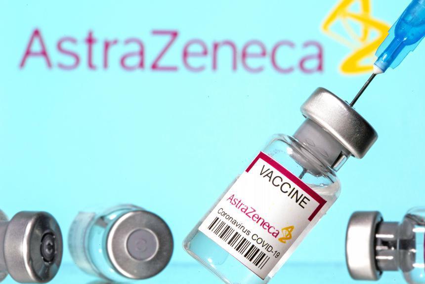 Серия вакцин нобивак для кошек: какие бывают и как применять