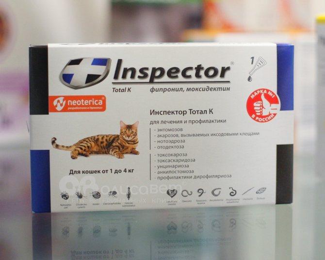 Топ 13 лучших таблеток от глистов для кошек: какое средство выбрать