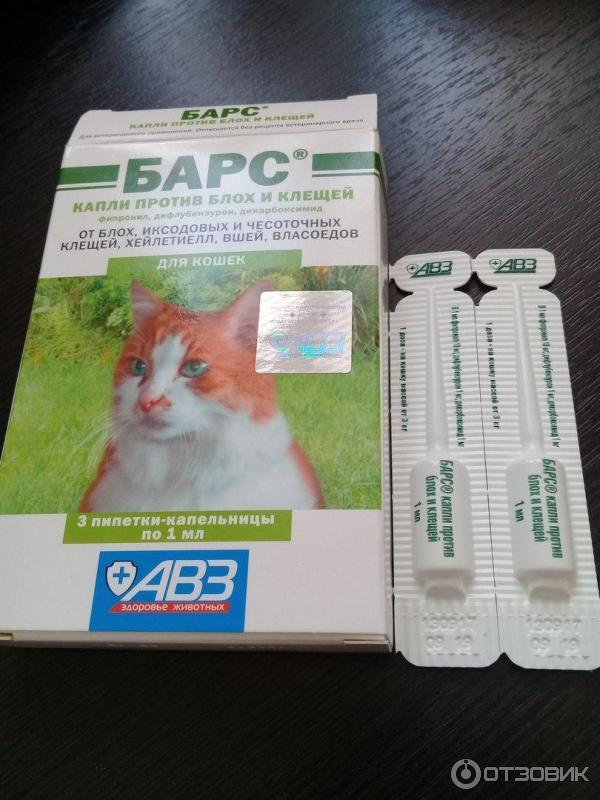 Барс капли от блох и клещей для кошек - инструкция по применению - kotiko.ru