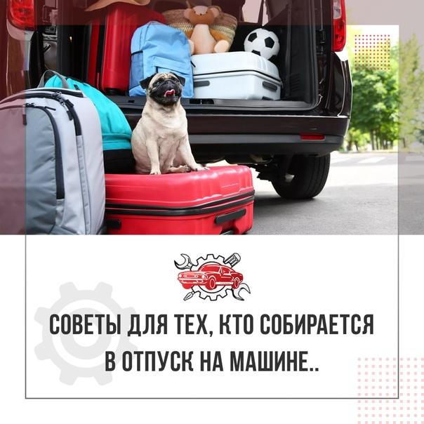 Где оставить собаку на время отпуска | hill's pet