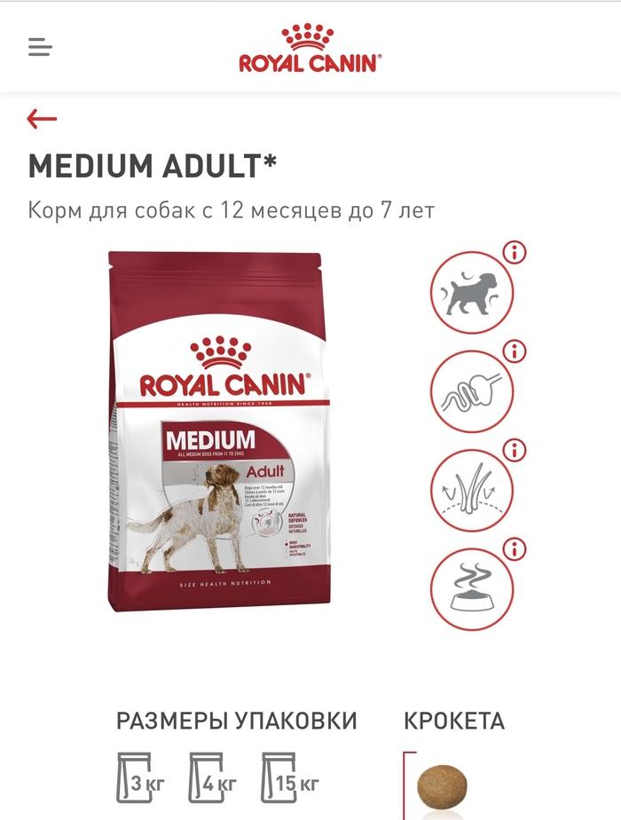 «роял канин»: отзывы и советы ветеринаров :: syl.ru