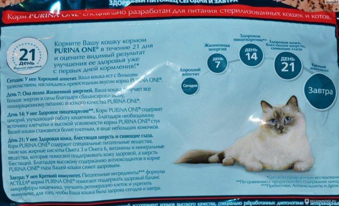 Состав и отзывы о корме для кошек felix
