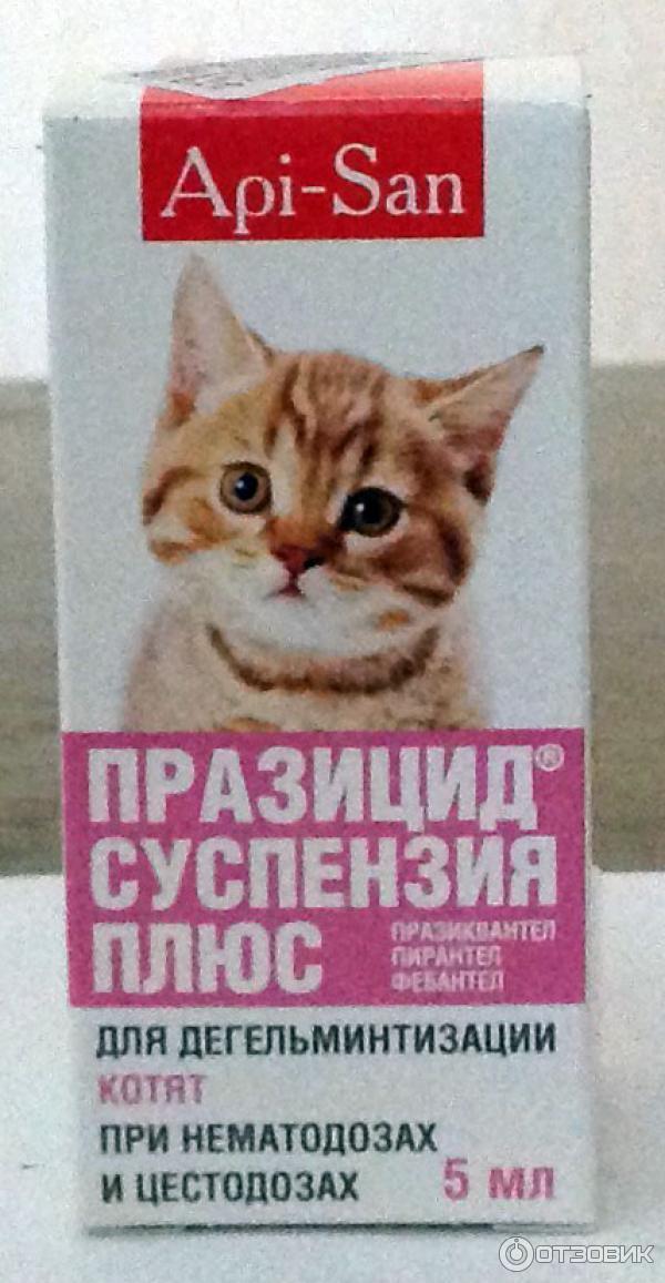 Празицид суспензия плюс для кошек: инструкция и отзывы о препарате