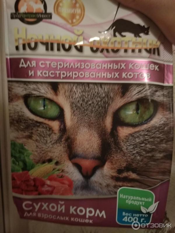Корм для кошек «трейнер»: его состав и виды, плюсы и минусы, отзывы ветеринаров и владельцев животных