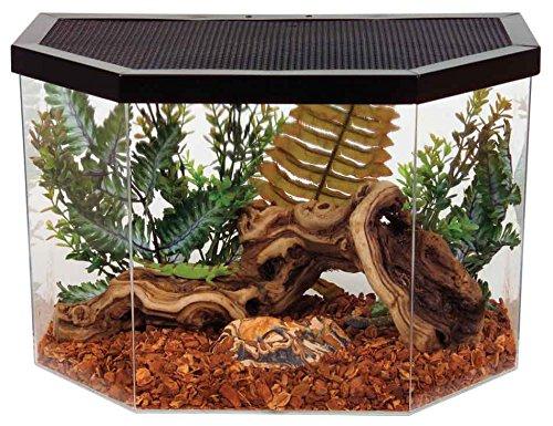 Как сделать домашний террариум руками. оригинальная кровля и дизайнерские крыши: terrarium. как самостоятельно сделать и оформить качественный террариум для змеи, ящерицы, черепахи, крокодила, удава,