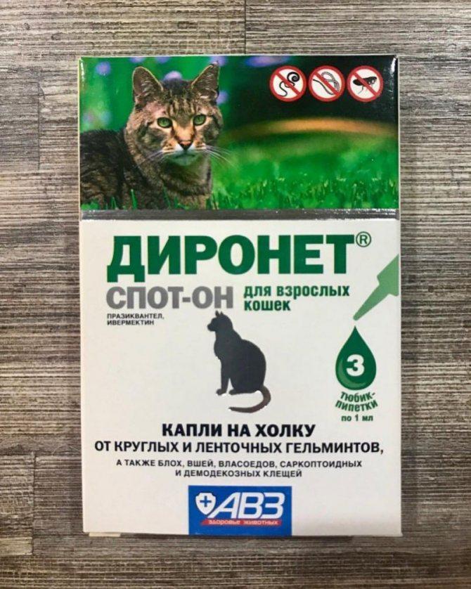 Диронет для кошек (капли спот-он, таблетки, суспензии): инструкция по применению, отзывы