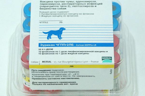 Инструкция по применению вакцины «рабизин», показания и противопоказания к прививке у кошек