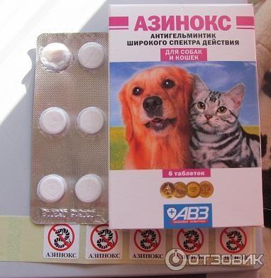 Азинокс для кошек — расчет дозировки, состав и принцип действия таблеток от глистов