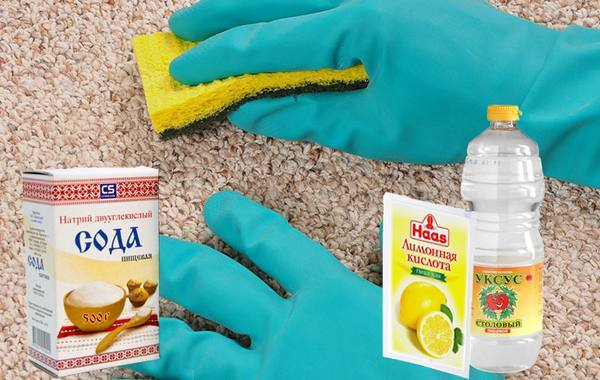 Чем отмыть ковер от собачьей мочи
