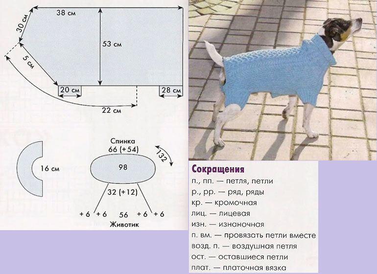 Вязаная одежда для собак своими руками: схемы, выкройки и правила для начинающих мастеров