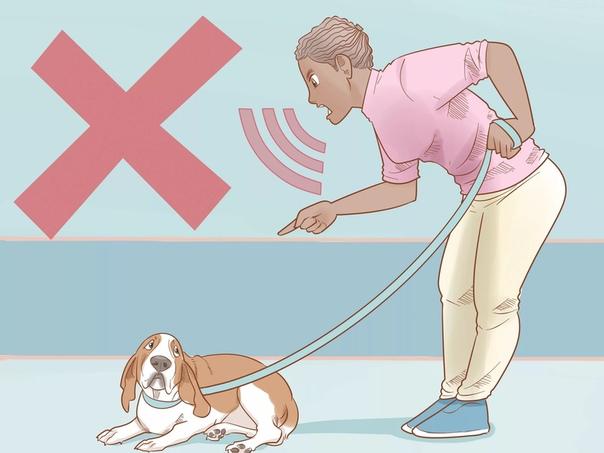 Как правильно наказывать собаку?