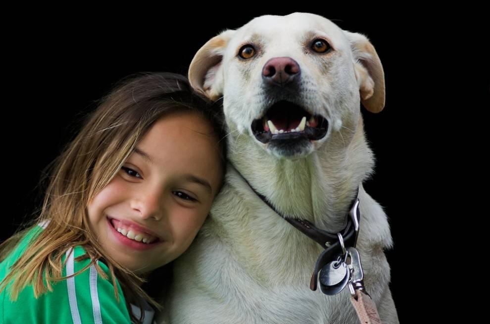 Почему собака лижет пол, бетон, асфальт и другие поверхности: причины поведения, действия хозяина