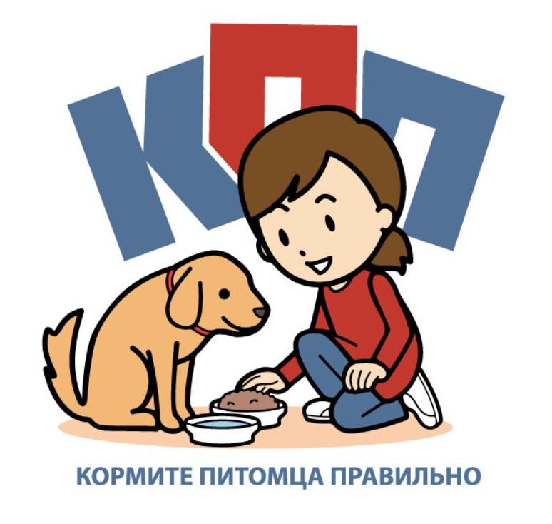 Кейс: как молодой сервис помощи бездомным животным привлек в партнеры мастодонтов рынка