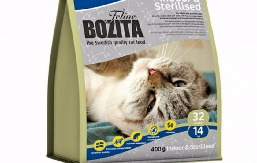Рейтинг кормов для кошек 2019 года: лучшие кошачьи корма по мнению ветеринаров, чем кормить питомца, советы, отзывы, обзор