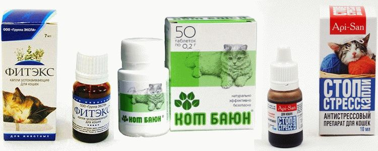 Успокоительное и снотворные средства для кошек