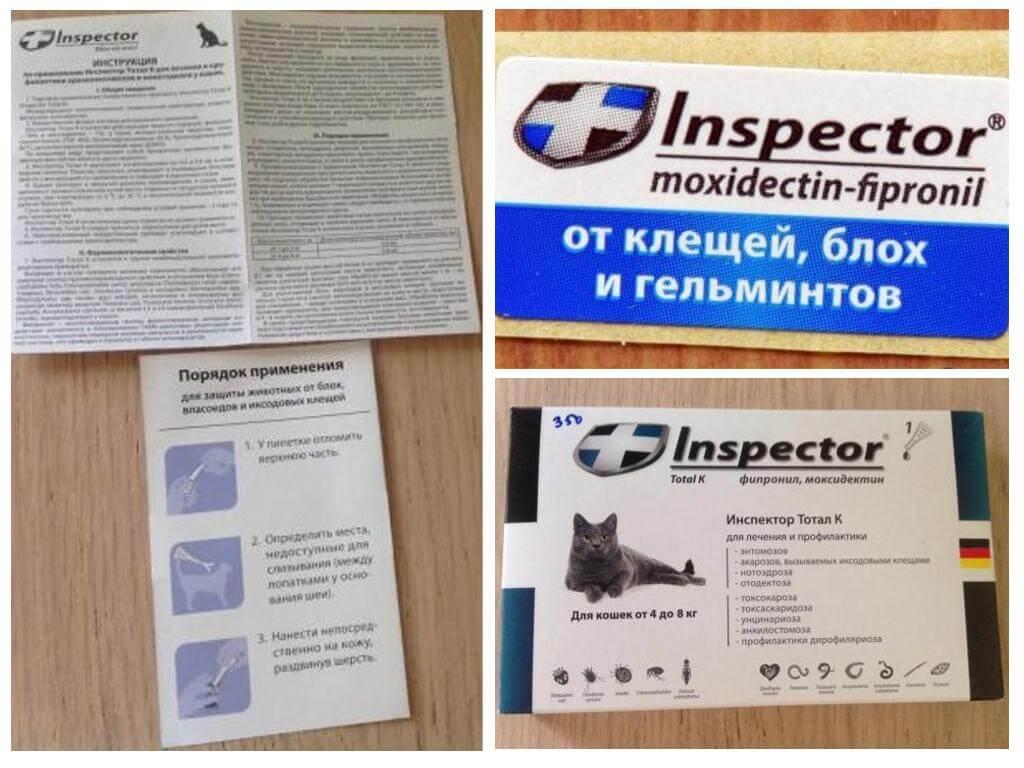 Капли инспектор для кошек – описание и инструкция: наша точка зрения на вопрос