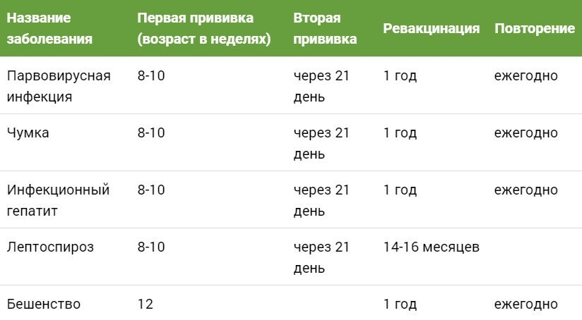 "Прививка для собак по возрасту: таблица. график вакцинации собак | нпк ""скифф"""