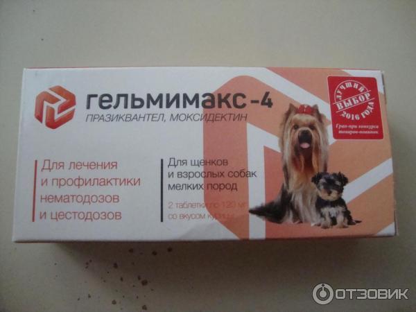 Гельмимакс для кошек: инструкция по применению, отзывы, аналоги