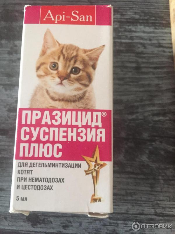 Празицид суспензия плюс для кошек: инструкция и отзывы