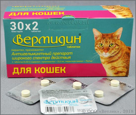 Вермидин для кошек — инструкция по применению: дозировка, противопоказания + фото и видео