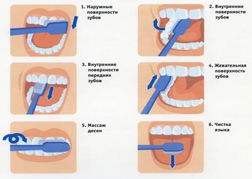 Как чистить зубы собаке: чем, как часто и нужно ли это в домашних условиях? средства для чистки: косточки, спрей, игрушки, салфетки, таблетки, спрей
