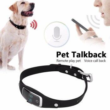 Gps трекер для собак и кошек - рейтинг ошейников для животных с gps