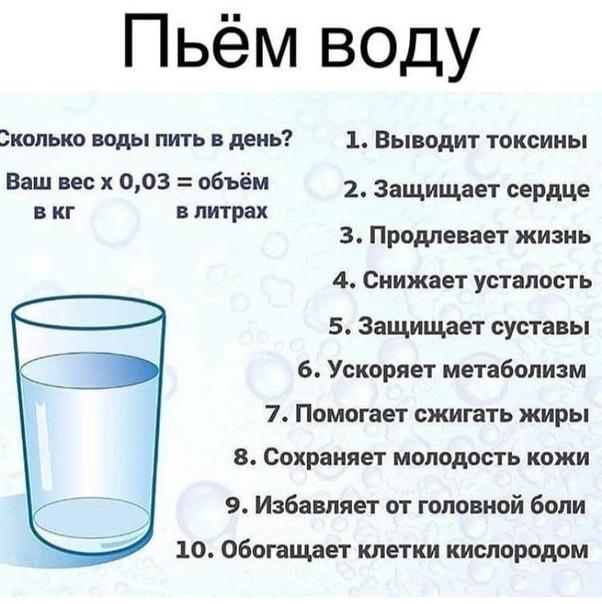 Кот стал много пить воды?