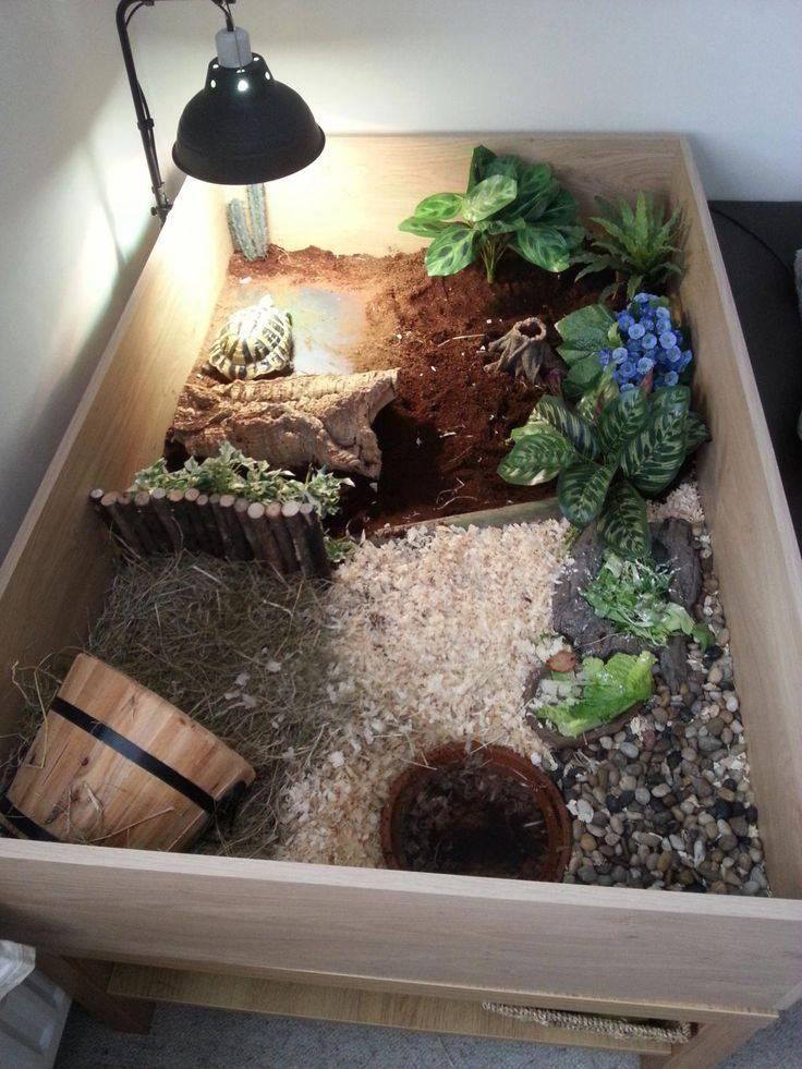 Островок для черепахи в аквариуме