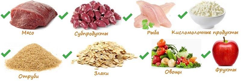Чем кормить мопса: натуральный рацион, готовые корма, смешанное питание