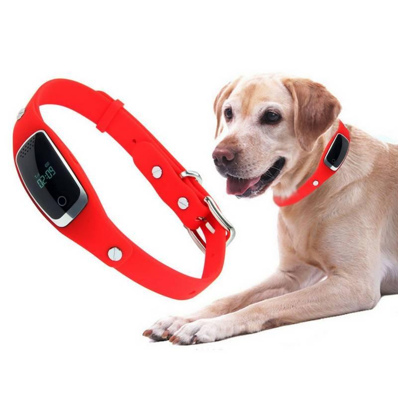 Gps трекер для собак: устройство, принцип работы, модели