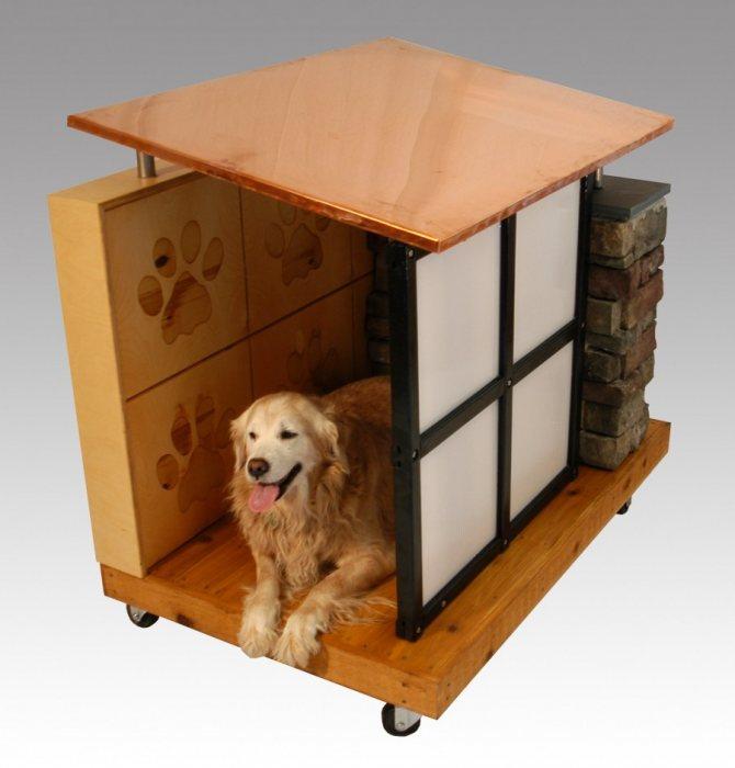 Домик для собаки: как сделать своими руками в квартиру для мелких пород - сшить мягкий из поролона, лежанку, домашнюю будку, из коробки, а также фото и выкройки