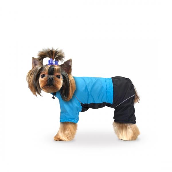 Гладкошерстные породы собак ? для квартиры, средних размеров, маленькие и большие с фото и описанием   petguru