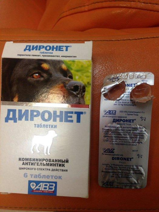 Азинокс плюс для собак: инструкция по применению, состав и действие, отзывы