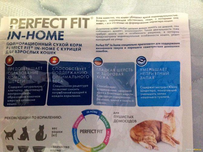 Purina корм для кошек: 5 популярных видов, отзывы