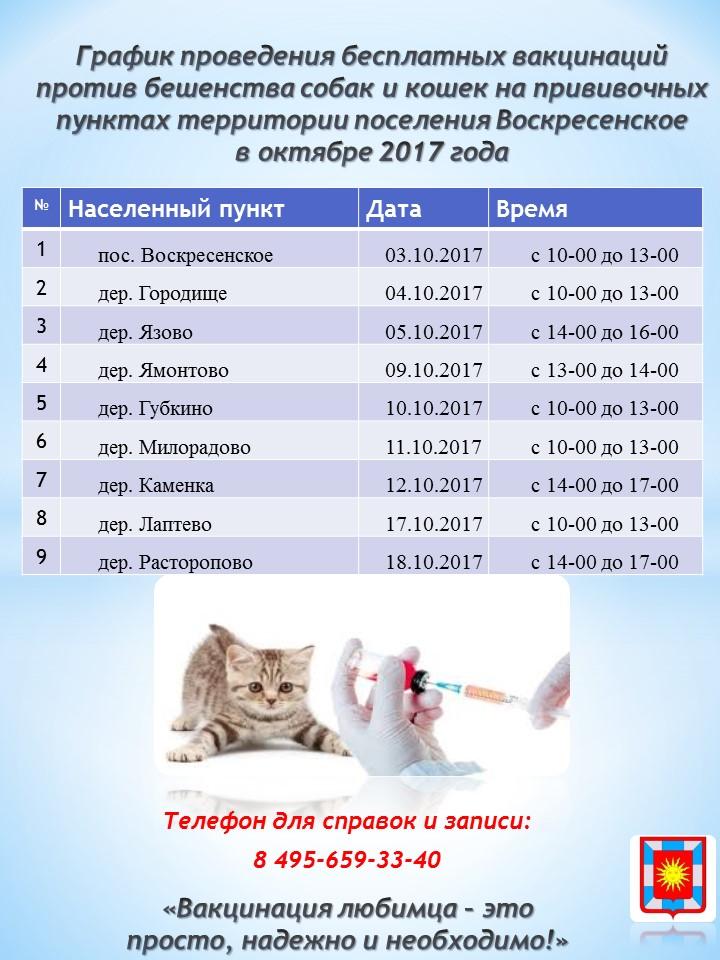 Сколько нужно сидеть дома после прививки собаке