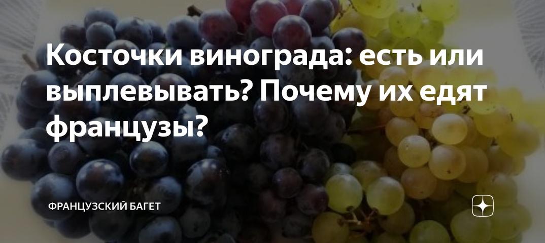 Можно ли йоркширскому терьеру давать фрукты?